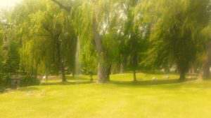 Parc à Argeles-Gazost dans les Pyrénées